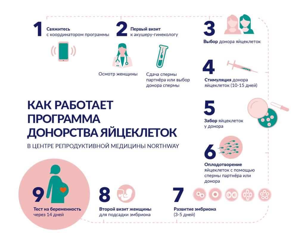 Infografikas Ru